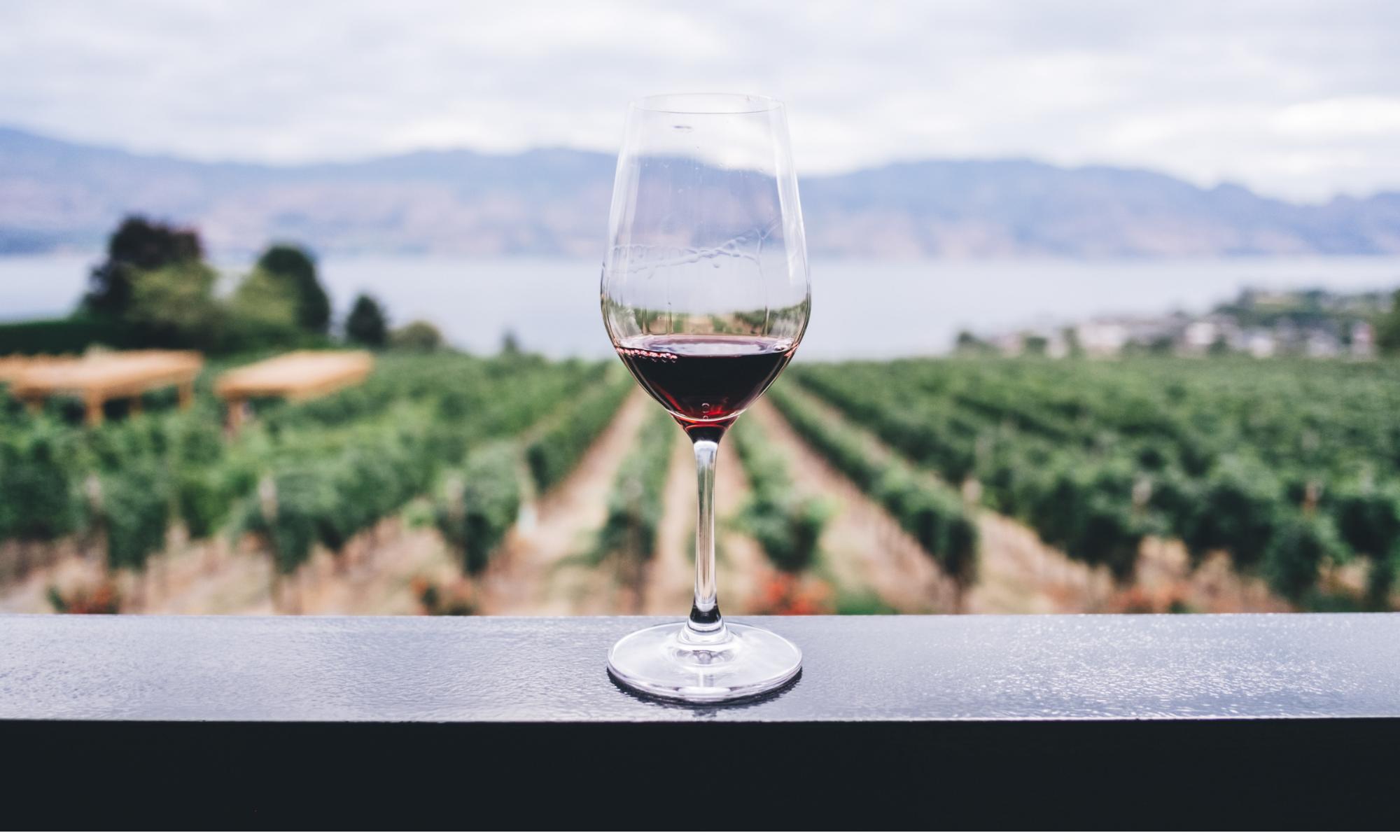 Lehigh Valley Wine Auction & Gala
